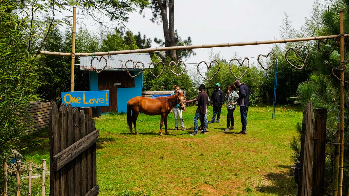 Group of people and a horse stand in a farm yard in Haiti