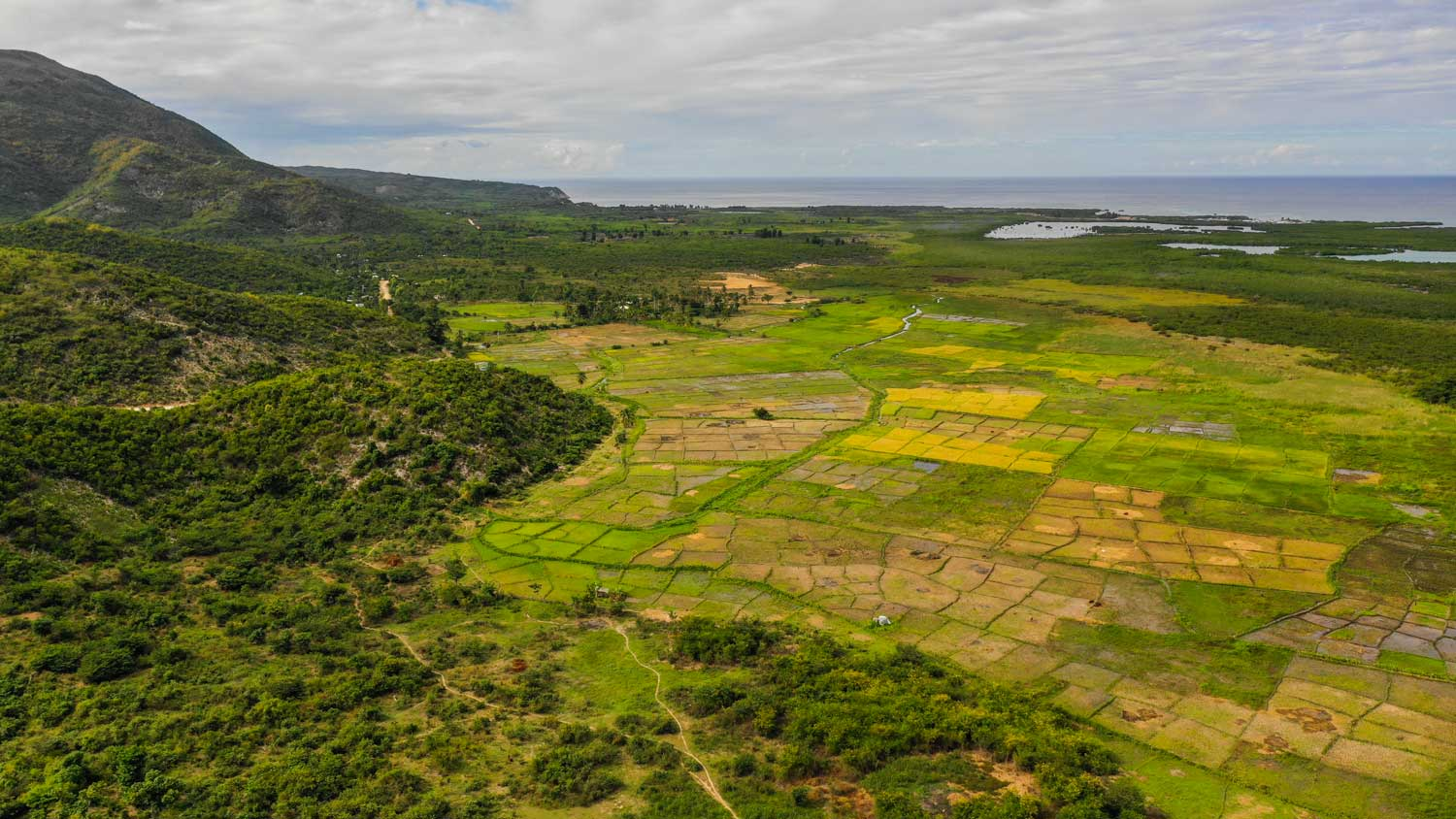 Aerial photo of rice fields by the coast in Corail, Haiti