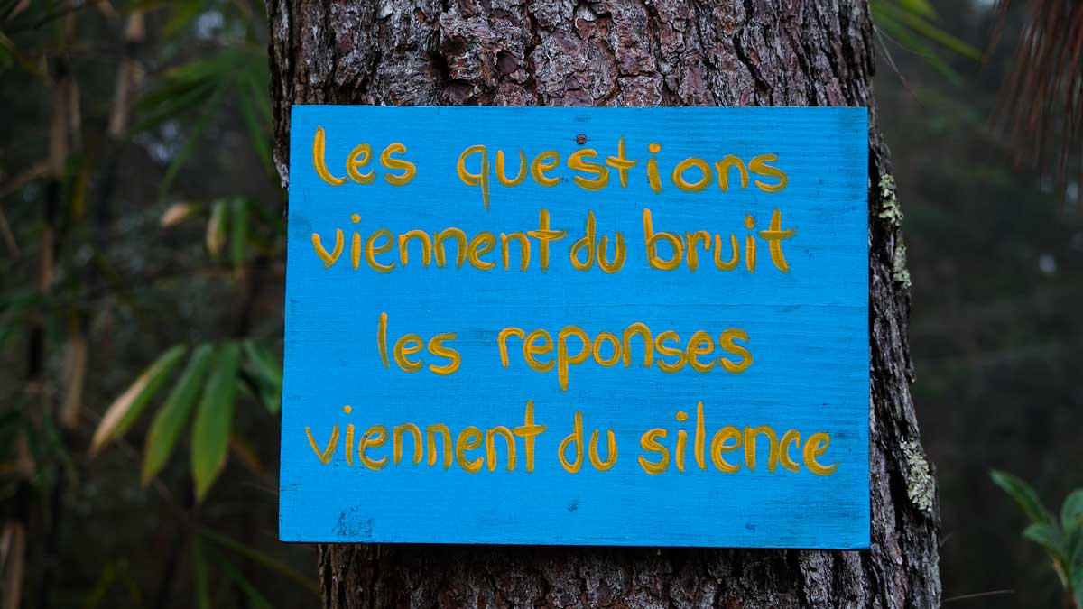 Sign in French on a tree