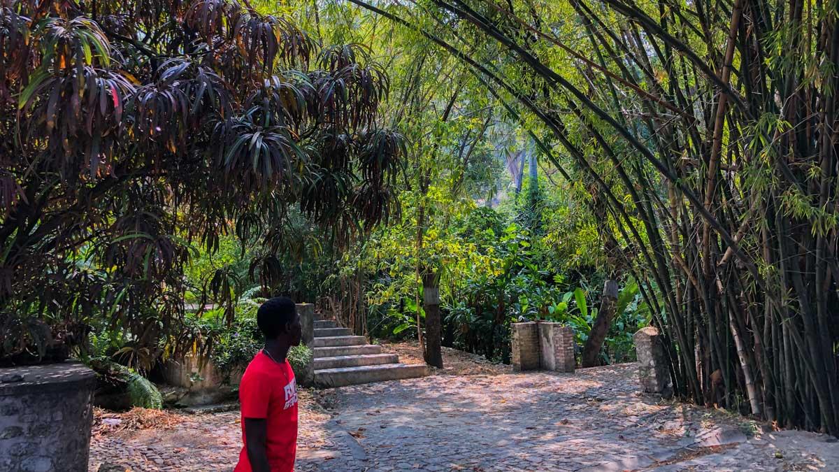 Garden at Villa Kalewès, Petion-Ville, Haiti