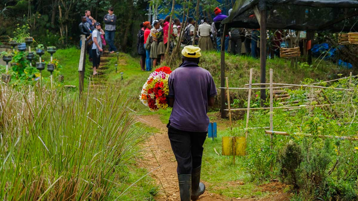 Man carries flowers along green path at a farm